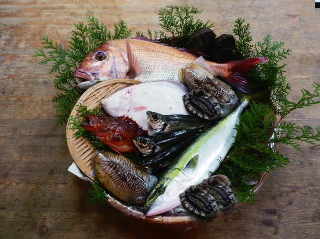 玄界灘の新鮮な魚介類